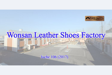 Wonsan Leather Shoes Factory